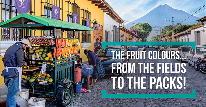 The fruit colours... from the fields to the packs!